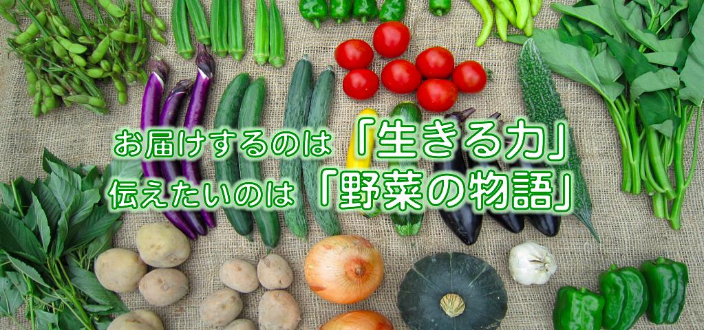 株式会社しあわせ野菜畑 トップ画像