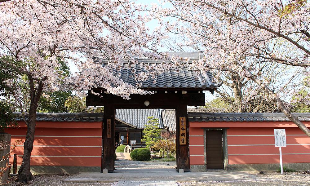 平田寺 トップ画像